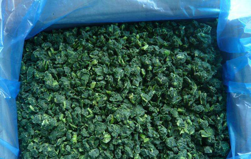 Whole Sale IQF Frozen Spinach